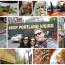 Portland in 10,000 Steps