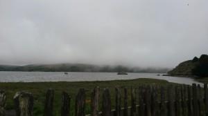 tomales_bay_hog_island