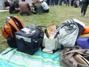 2osl2014_picnic