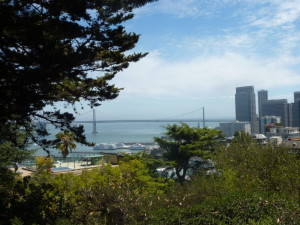 coit_tower_view