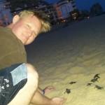 Sea_Turtle_Steve